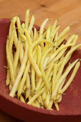 Bean Cherokee Wax    250 seeds